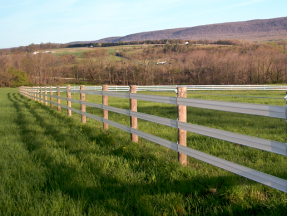 Horse-Rail-2